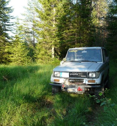 discover-the-wild-south-by-4x4