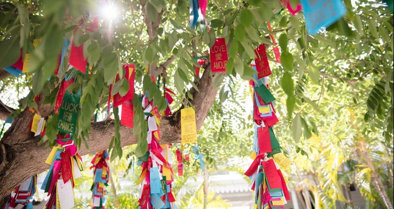 tree-of-wishes