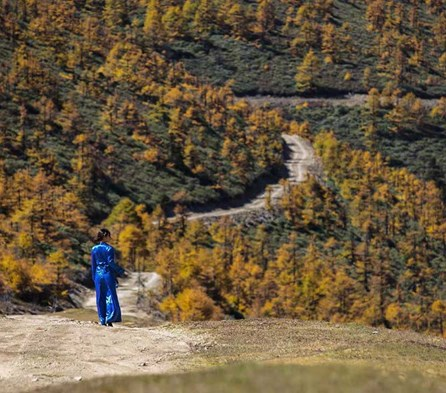 Hiking Yunnan's Great Outdoors (Travel Experience)