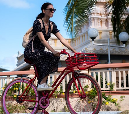 A True Explorer's Bicycle Tour (Travel Experience)